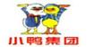 小鸭1.jpg